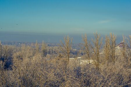 Winter urban landscape - snow covered trees on foggy background Imagens - 133181408