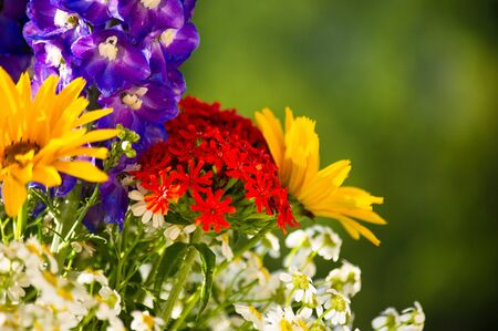 a colorful bouquet of bright spring flowers of various types, close-up