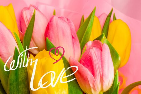 Greeting card - a bouquet of fresh spring pink and yellow tulips, holiday greetings, handwritten inscription with a brush, greeting lettering.