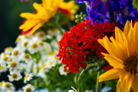 a colorful bouquet of bright spring flowers of various types, close-up 版權商用圖片
