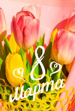 Greeting card - a bouquet of fresh spring pink and yellow tulips, holiday greetings, handwritten inscription with a brush 8 march, greeting lettering, russian text. Reklamní fotografie