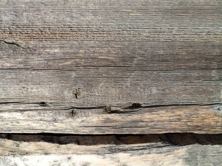 texture of old shabby rustic wooden fence made of planks, with rusty nails, close-up, grunge background