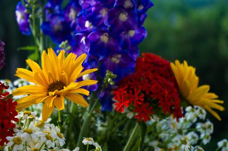 a colorful bouquet of bright spring flowers of various types, close-up Stock Photo