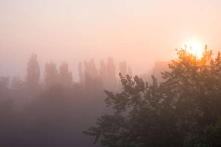 Spring city landscape - morning fog, green trees and sky with clouds Standard-Bild