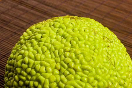Green fruit of maclura pomifera, osage orange, horse apple, adam apple grow on bamboo mat, macro, close up