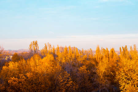 Autumn cityscape on a Sunny day - yellow and colorful autumn trees, the sky with clouds with autumn haze