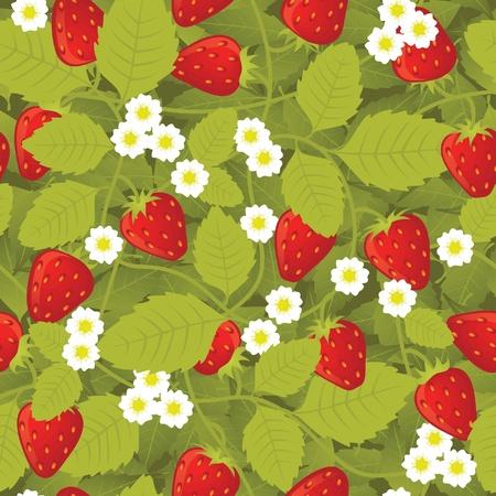 wild strawberry: Strawberry Seamless Pattern Illustration