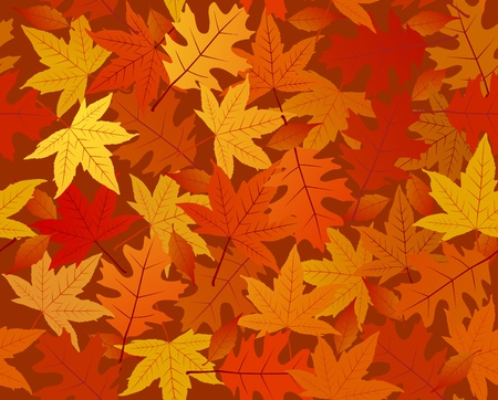 fall images: Leaves Seamless Pattern