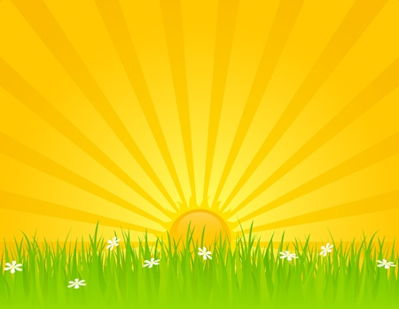 dusk: Sunny summer day with grass and daisies. EPS 8 RGB with global colors vector illustration.
