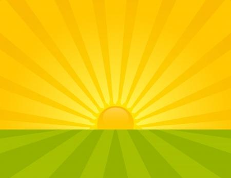 Sunrise on the countryside. Summer sunny day. Illustration