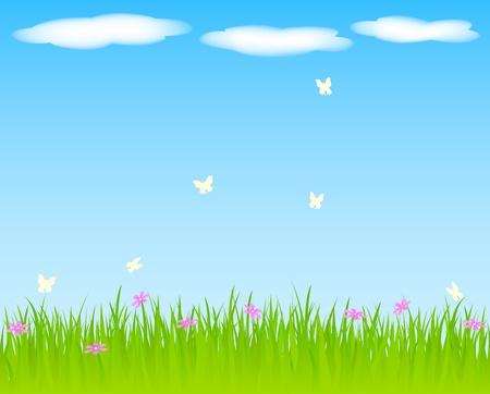 Primavera de fondo con césped y flores.