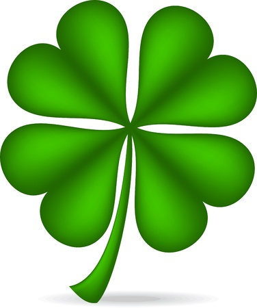 lucky clover: Shamrock isolated over white background.