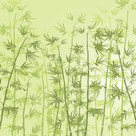 green bamboo: Bamboo forest background. Illustration