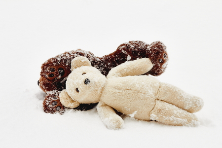 snow storm: brown stuffed bear and white stuffed teddy bear laying on ground in snow storm Stock Photo