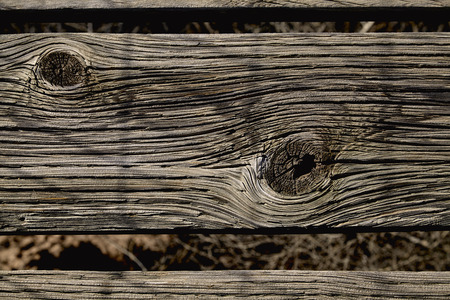 weathered: Knots in weathered wood slat