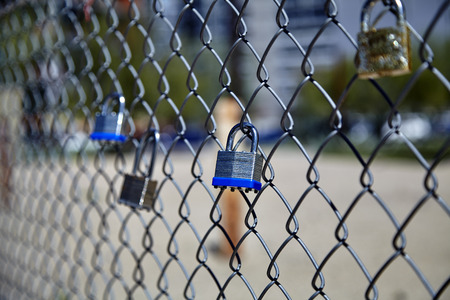 chain link fence: Group of padlocks locked to chain link fence taken with shallow depth of field