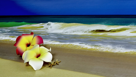 shorebreak: A pink and white Plumeria Hawaiian Flower with starfish laying on sand with waves in background and shallow depth of field Stock Photo