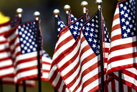 citizenship: A row of US Flags blowing in the wind