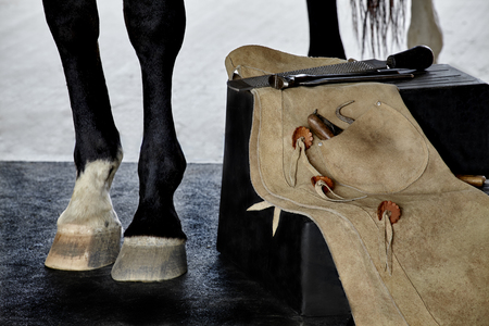 farrier: Tools of a farrier including rasp, hoof knife, chaps, hoof pick, and nippers draped over stool next to a horse