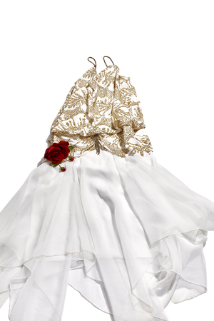 womans: Womans party dress with sequins, rhinestones and a red rose isolated on white Stock Photo