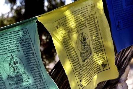 sutra: Colorful Buddhist Prayer Flags hanging on a string from tree to tree