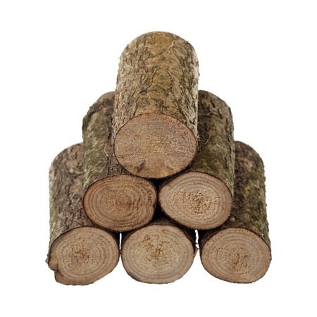 Six logs are isolated on a white background