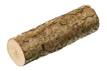 log on: One log is isolated on a white background  Stock Photo