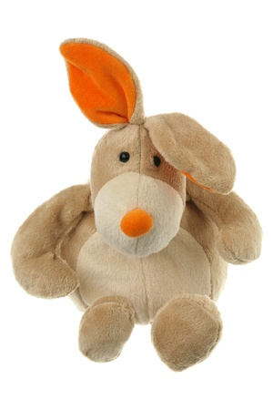 lop eared: The toy hare is isolated on a white background  Stock Photo