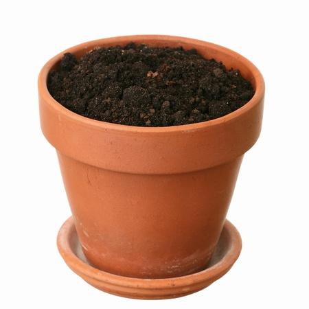 Fresh ground in a flowerpot  photo