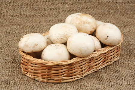 interweaving: Field mushrooms in a basket  Stock Photo