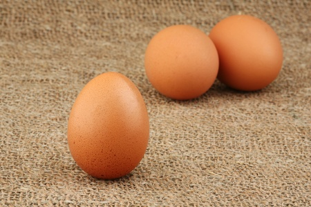 New-laid eggs on a sacking  Stock Photo
