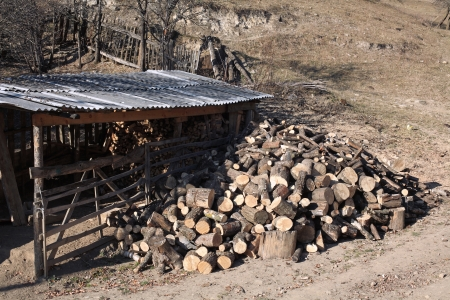 A lot of firewood for the winter  Stock Photo