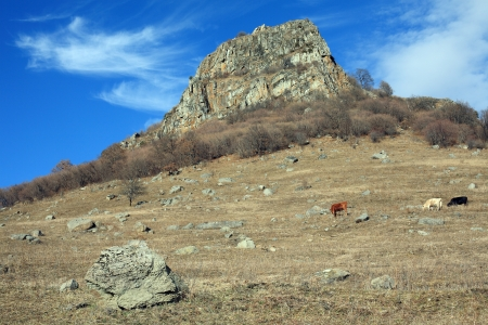 Beautiful view of the mountain, Northern Caucasia
