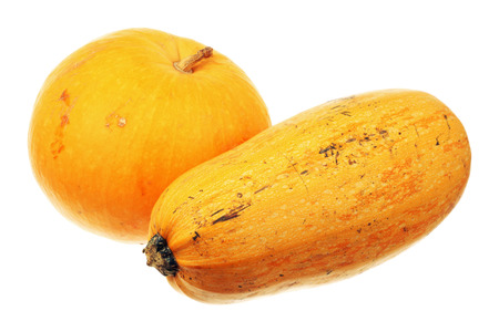 dried gourd: Ripe pumpkin and zucchini isolated over white background