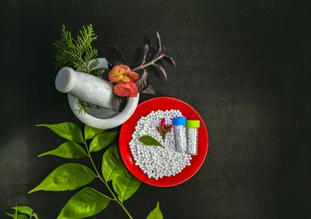 Homeopathic Medicine Concept - Top view of Scattered homeopathic sugar pills in a red plate with green leave, flower and bottles of globules. Healing herbs, pink flower petal and a mortar.