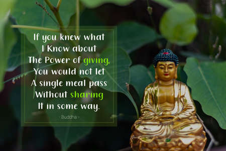 If you knew what I know about the power of giving, you would not let a single meal pass without sharing it in some way - buddha