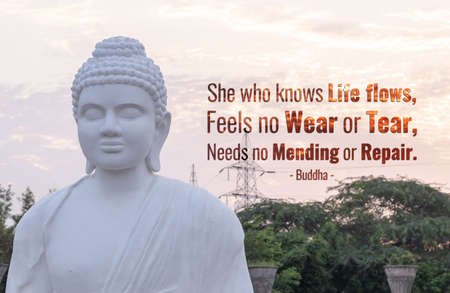 She who knows life flows, feels no wear or tear, needs no mending or repair - buddha