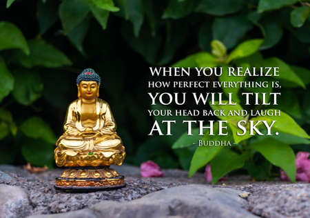 When you realize how perfect everything is, you will tilt your head back and laugh at the sky - buddha