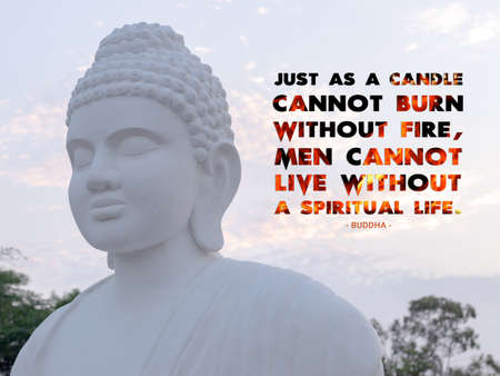 Just as a candle cannot burn without fire, men cannot live without a spiritual life - buddha Imagens
