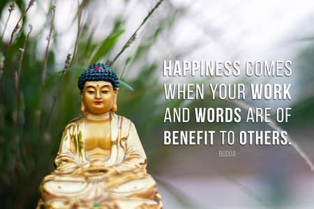 Happiness comes when your work and words are of benefit to other - buddha Imagens