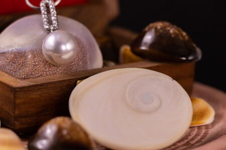 Delicate Silver Necklace with Pearl Pendant on wooden box and spreaded seashells on dark background