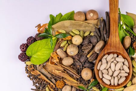 Top view of variety of spices with green leaves and herbal medicines in wooden spoon on white background