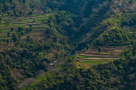 aerial view of beautiful farms on mountains along with trees