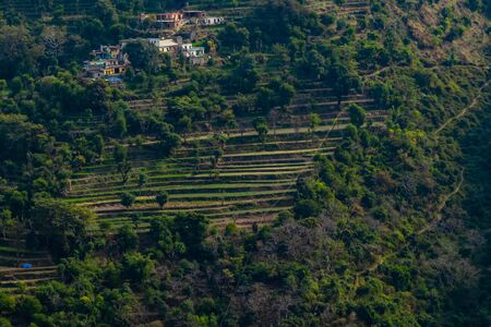 aerial view of terrace type crop field on mountain with trees and few houses Imagens