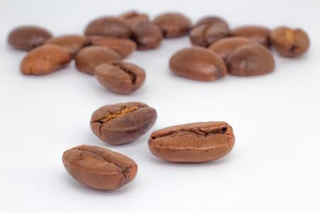 Coffee arabica on white background