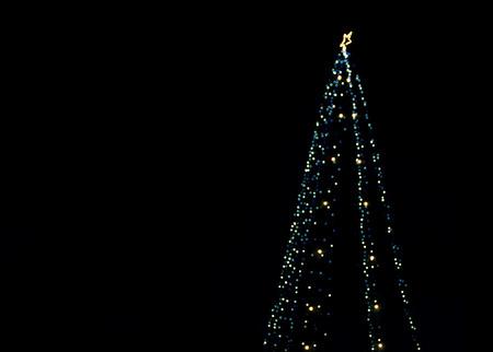spacing: Christmas tree lights with spacing for caption