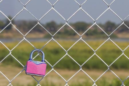 fench: pink padlock on metal fench, valentine background