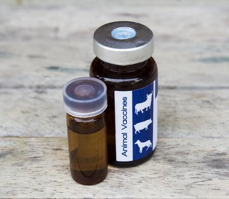 lepra: vacuna animal animal para curar la piel animal, suave centrado