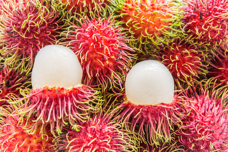 frutas tropicales: Red Rambutan , Tropical fruits  from Thailand.