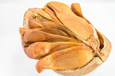 caoba: Abrir espect�culo c�scara interior de semillas de caoba sobre un fondo blanco.